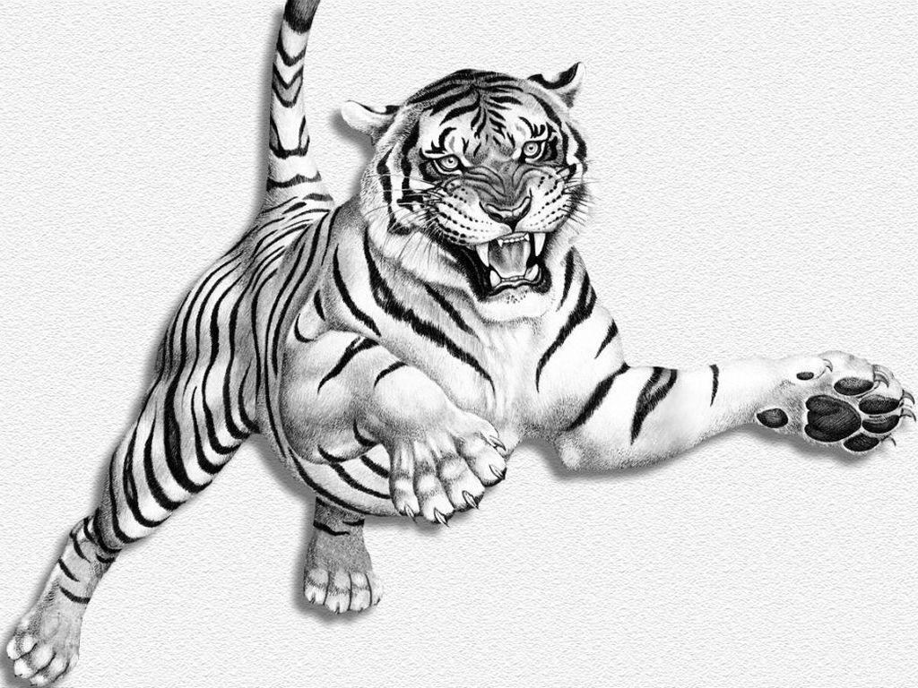 Tigre - Dessin de tigre facile ...